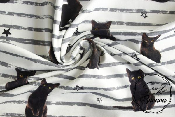 kitty cat jersey