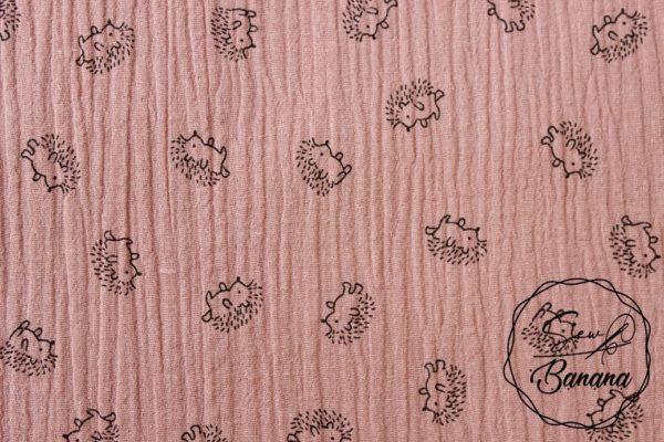 hedgehog Ash Rose